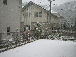 雪1月庭.jpg