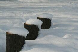 雪よこやま2.jpg