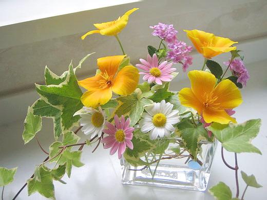 5月のお花.jpg