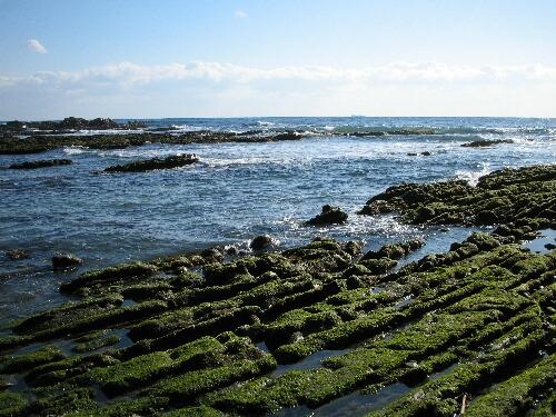 館山の海.jpg