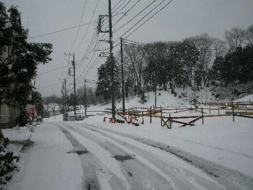 雪2月.jpg