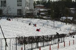 雪よこやま5.jpg
